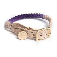 Found My Animal Collar Purple Ombré